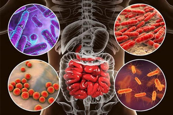MRM Health - Liệu pháp dựa trên vi sinh vật