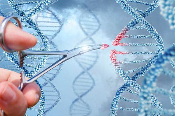 Khoa học sinh học Evora - Liệu pháp tế bào tái tạo